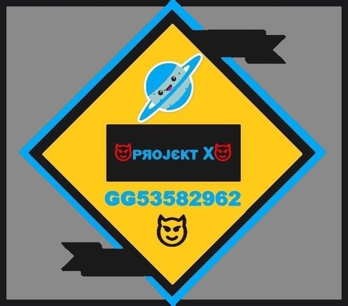 Projekt X 5.jpg